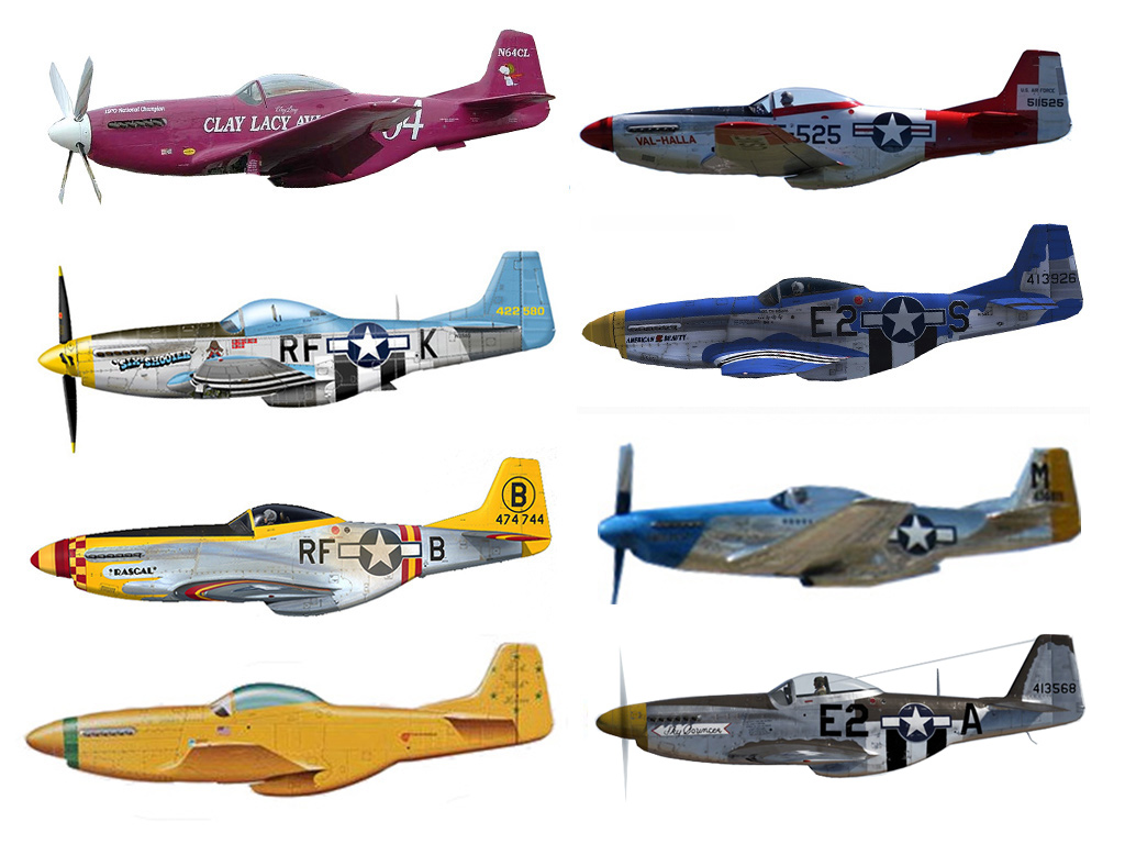 BUNDLE: P-51D Mustang Pack2 (17 models)