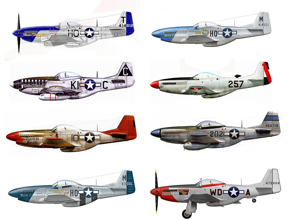BUNDLE: P-51D Mustang Pack3 (16 models)